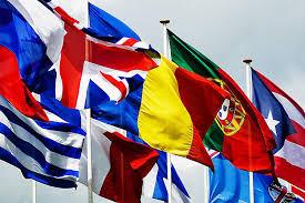 Us Virgin Island Flag List Of National Birds Country Symbols