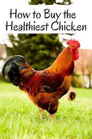 howhow to buy the healthiest chicken
