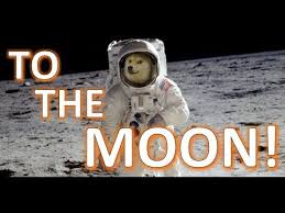 Dogecoin Meme - the meme to riches story of dogecoin breaking a billion dollars