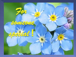 card for a special person free for someone you care ecards 123