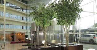 ascott ltd artificial trees and plants company