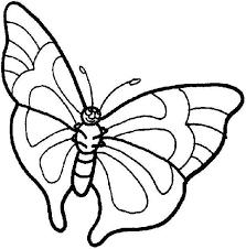 dessin ã colorier de papillon sur une fleur
