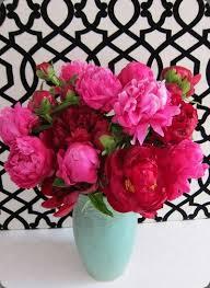 Peony Arrangement Brilliant Pink Flower Arrangement Denise Fasanello Peony