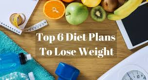 6 top most famous u0026 effective diet plans to transform you fitso