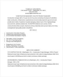 Project Manager Resume Summary Test Manager Resume Lukex Co