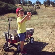 apple picking in julian macaroni kid