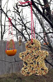 christmas for the birds the hortiholic