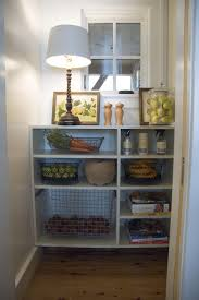 Small Kitchen Pantry Ideas Kitchen Pantry Shelving Captainwalt Com