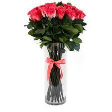 Long Stem Rose Vase Long Stem Collection Coral Eternity Roses