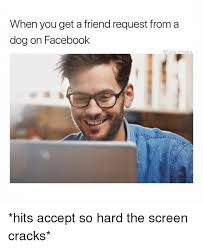 Friend Request Meme - when you get a friend request from a dog on facebook hits accept so