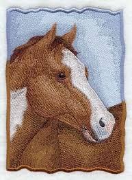 american paint horse charm american paint horse paint horses