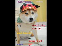 Hipster Dog Meme - much hipster shibe