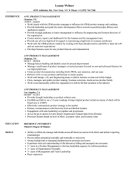 sle of resume avp product management resume sles velvet