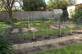blog u2013 the backyard farm