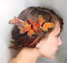 butterfly hair something s in your hair oh it s a butterfly animal ally