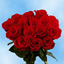 globalrose fresh red roses for valentine u0027s day 100 stems 100 red
