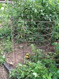 plant stand awesome tomato plant holder photos inspirations