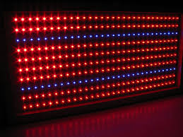 red and blue led grow lights firefly led grow light panel red go green led bulbs