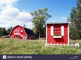 red barn on fraser valley farm pitt meadows bc british columbia