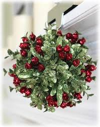 where to buy mistletoe what is mistletoe how can i find it quora