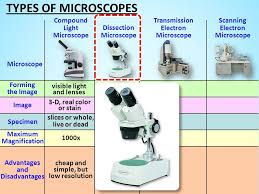 name one advantage of light microscopes over electron microscopes the microscope ppt video online download