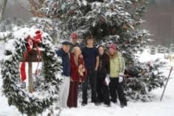 christmas tree farms in madison county north carolina
