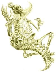 new tattoo sketches by jee sayalero illustration mayhem