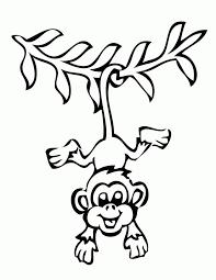 the 25 best monkey drawing ideas on pinterest black monkey pro