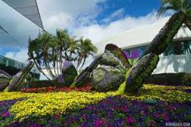2015 epcot international flower and garden festival opening day