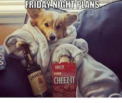 Friday Night Meme - friday night plans cheelit cheezit dank meme on me me