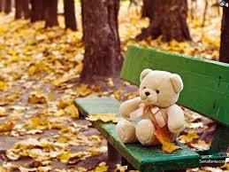 cute teddy bear images have you seen our teddy bears designbump