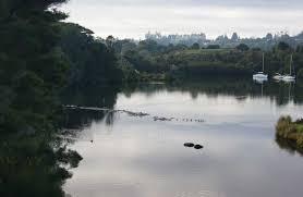 kororipo heritage park places to go in kerikeri