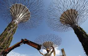 singapore supertrees how concrete and metal woodland is