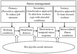 stress management chart stress management flow chart sample