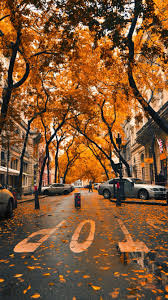 Autumn String Lights by Fall Iphone Wallpaper Iphone Wallpapers Pinterest Wallpaper
