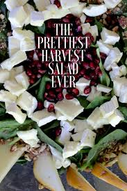 the prettiest harvest salad foodie