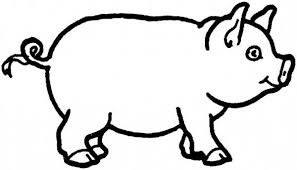 How To Draw A Pig Coloring Page Coloring Sky Pig Coloring Pages