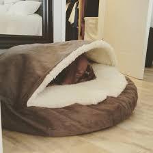 Cave Beds For Dogs Cozy Cave Best Vizsla Bed Animals Pinterest Vizsla