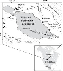 manganese bearing rhizocretions in the willwood formation wyoming