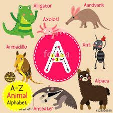 a letter tracing ant aardvark alligator alpaca anteater cute