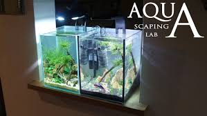 Aquascape Filter Aquascaping Lab Tutorial Nano Cube Aquarium Size 20 X 20 X 25h