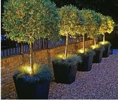 Landscaping Ideas For Small Front Yards Best 25 Modern Front Yard Ideas On Pinterest Large House