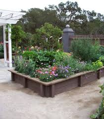 beautiful backyard landscaping ideas landscape san francisco with