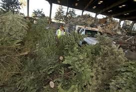 christmas tree recycling in orange county cities u2013 orange county