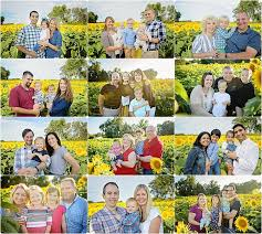 Grinter Sunflower Session Weekend Recap Grinter U0027s Farm