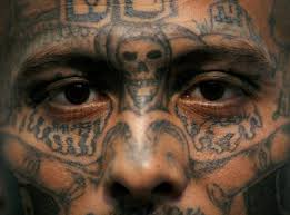 where does ms 13 mara salvatrucha name come from business insider