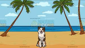 australian shepherd emoji a cute australian shepherd dog with a calm beach background