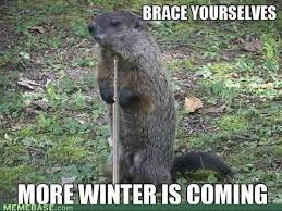 Groundhog Meme - fuck your shadow groundhog meme by smoove milton memedroid