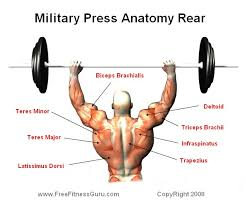 the best upper body exercise u2013 return of kings