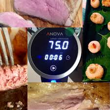 Wifi Cooker by Review Of Anova Sous Vide Precision Cooker Wifi Healthy Living Sg